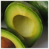 344_avocado_1651