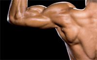 Gain Lean Muscle Mass