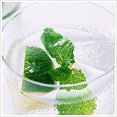 347_mint_water_165