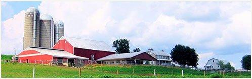 345_farm_lg_tbb