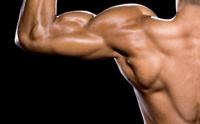 Gain Lean Muscle Mass